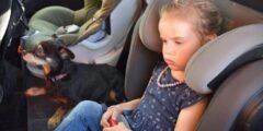 تحذير.. لا تترك الأطفال في السيارة تحت أشعة الشمس